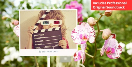Photo Gallery with Sunny Flowers - After Effects Project (Videohive)