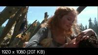 13-й воин / The 13th Warrior (1999) Blu-Ray