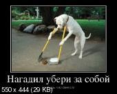 Демотиваторы '220V' 23.05.14