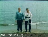 В старых ритмах (1982) DVDRip