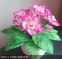 Мои цветочки из бисера F33f5e050d0193fb4d9c82c43f12ca5a