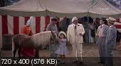 Деликатное состояние папы / Papa's Delicate Condition (1963)